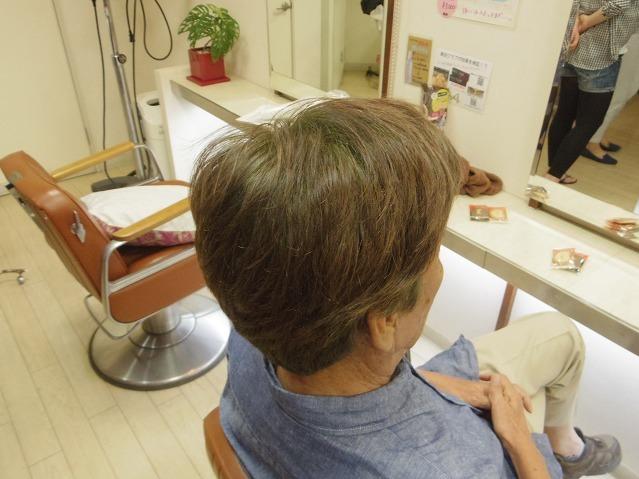 白髪率90%へ液状化HQヘナwithインディゴ