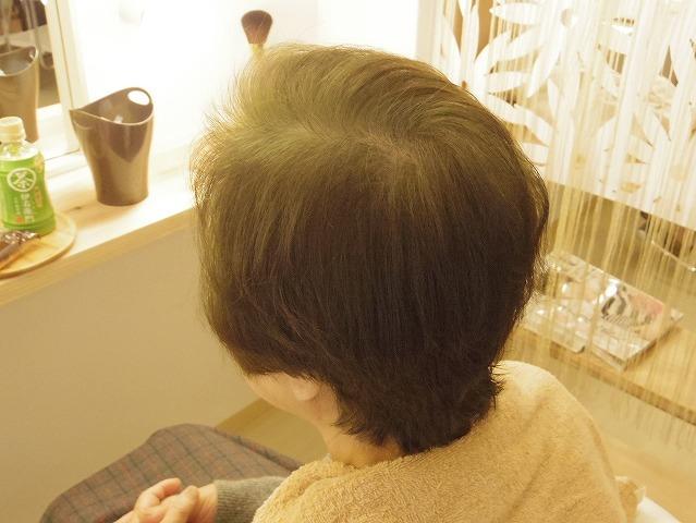 白髪率80%琥珀→鳶色