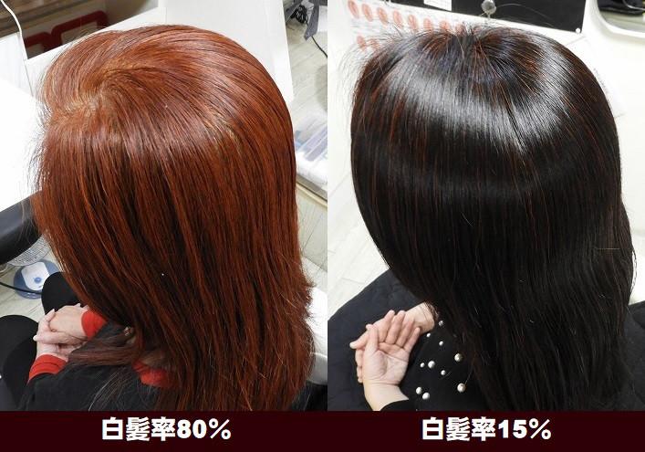 白髪率80%2週間毎HQヘナは本当に素晴らしい!VOL.2