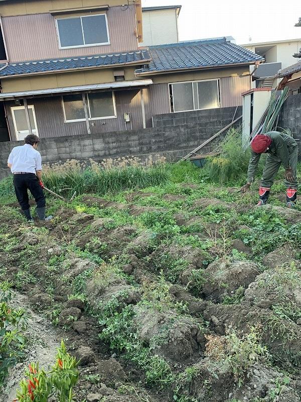 姫路-沖縄へナ苗、引っ越しプロジェクトその1