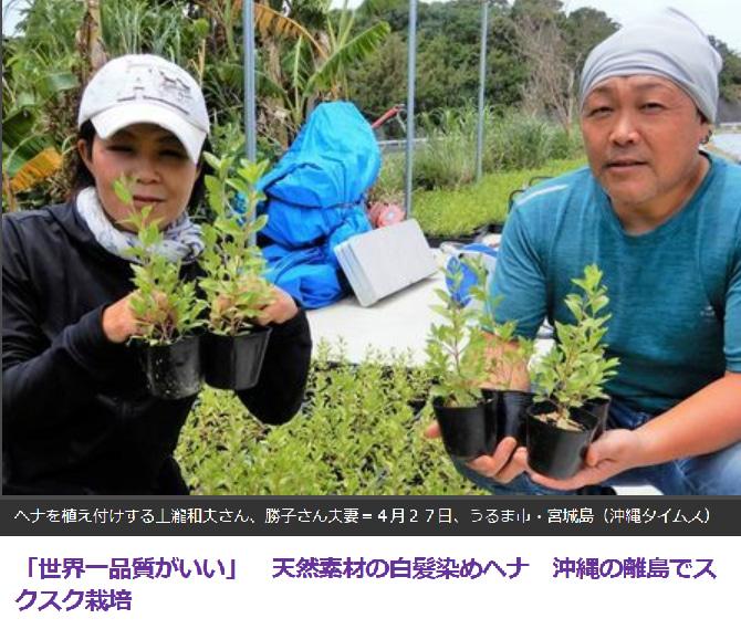 沖縄タイムスで紹介されました。